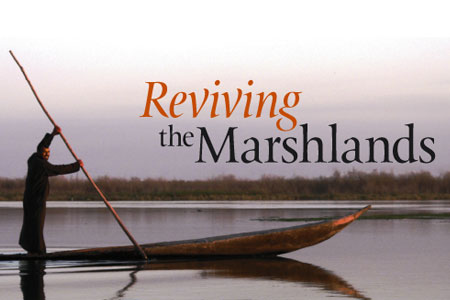 Reviving the Marshlands