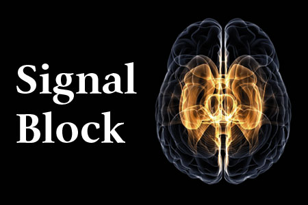 Signal Block - A special health feature on Alzheimer's and Dementia