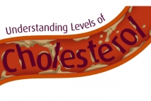 Understanding Levels of Cholesterol